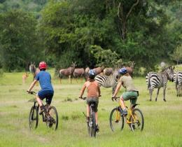 6 DAYS UGANDA WILDLIFE SAFARIA