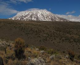 8 Days Mt. Kilimanjaro-Lemosho Route Adventure
