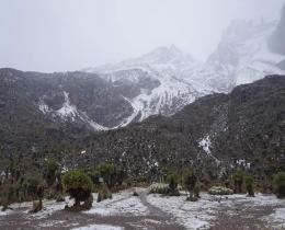 6 Days Mt. Kilimanjaro Trekking- Machame Route Adventure